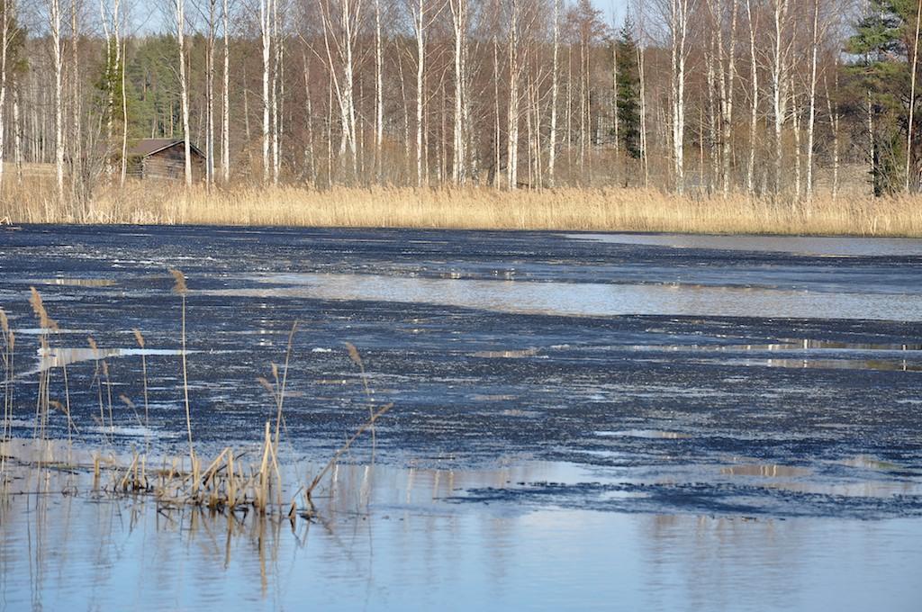 pikkujärvi1